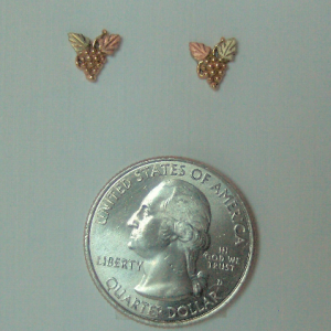 Whitaker's Black Hills Gold Micro Traditional Style Post Earrings